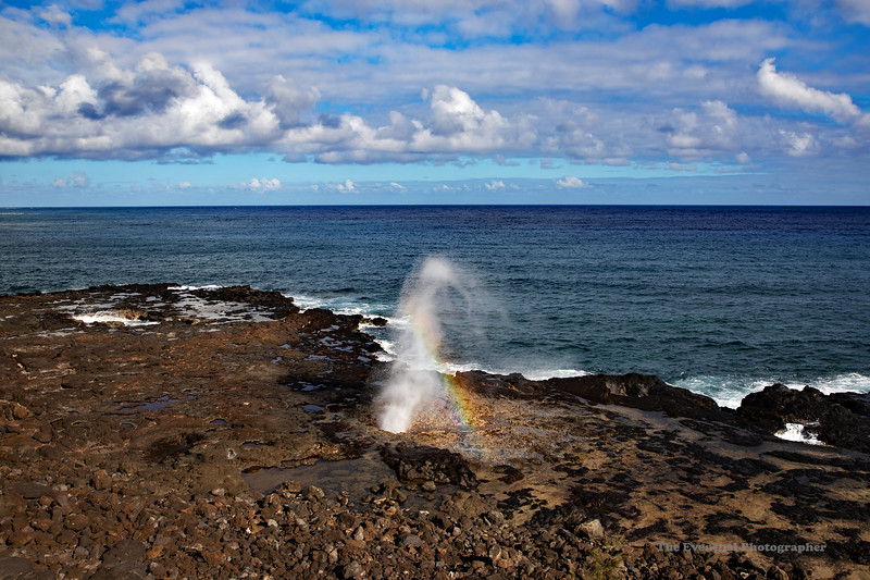 Spouting Horn With Rainbow (5296) Marked