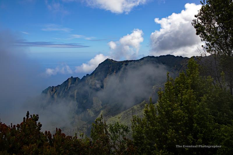 Waimea Canyon Kalalau Trail #4 (5675) Marked