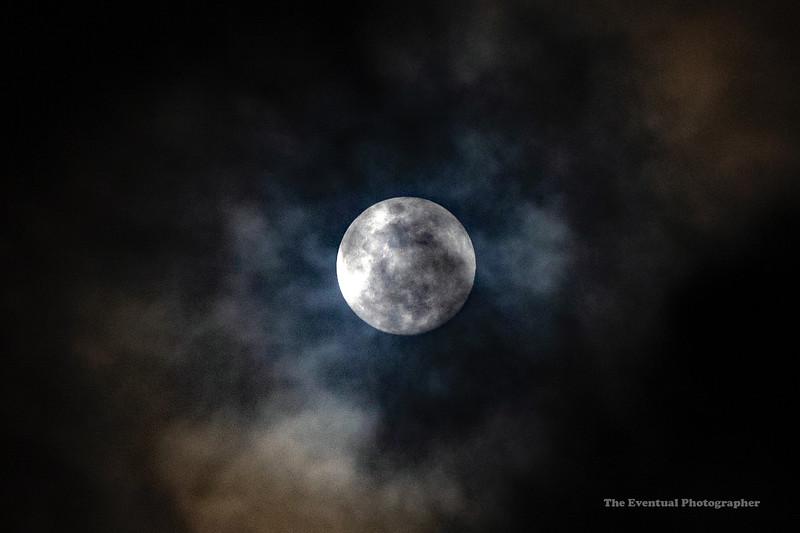 Koloa Landing Bluish Moon (5215) Marked