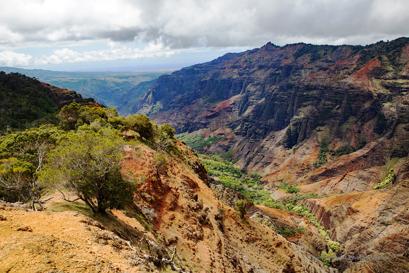Waimea Canyon From Top of Trail (5499) Marked