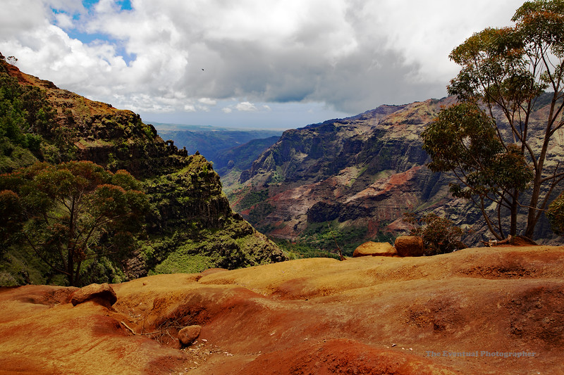 Waimea Canyon Distant View of Arch (5541) Marked