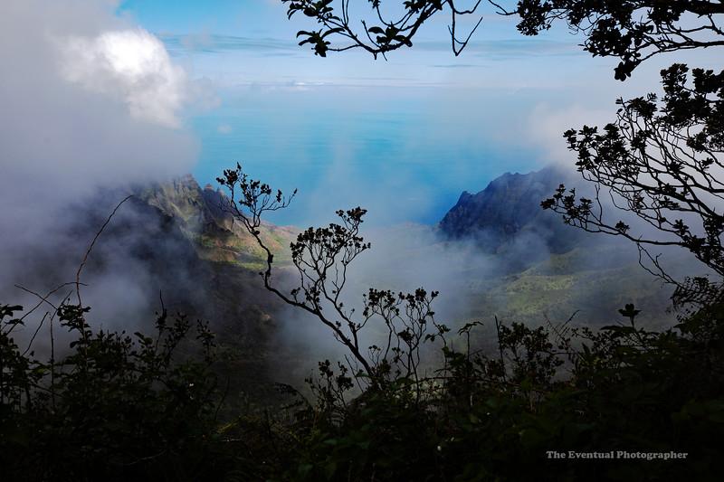Waimea Canyon Kalalau Trail #12 (5720) Marked