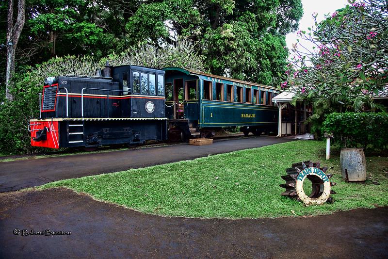 Plantation Tour Train