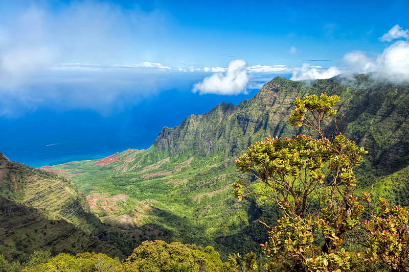 Kalalau Valley Pihea Trail View