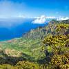 Kalalau Valley Pihea Trail View