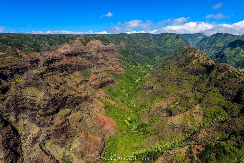 Waimea Canyon and valley