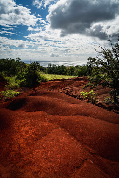 Incredible contrast of the red clay-like dirt with tropical fauna.  A little less jungle-y on the southwest side of the island here, near the entrance to Waimea Canyon.