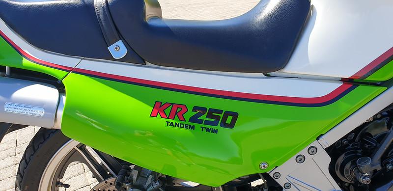 Kawasaki KR250 -  (29)
