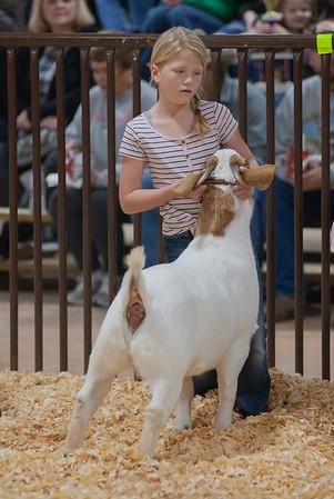 kay_county_showdown_goats_20191207-15