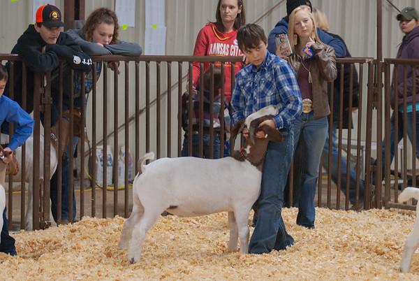 kay_county_showdown_goats_20191207-24
