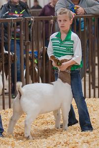 kay_county_showdown_goats_20191207-28