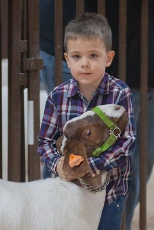 kay_county_showdown_goats_20191207-5