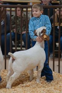 kay_county_showdown_goats_20191207-13