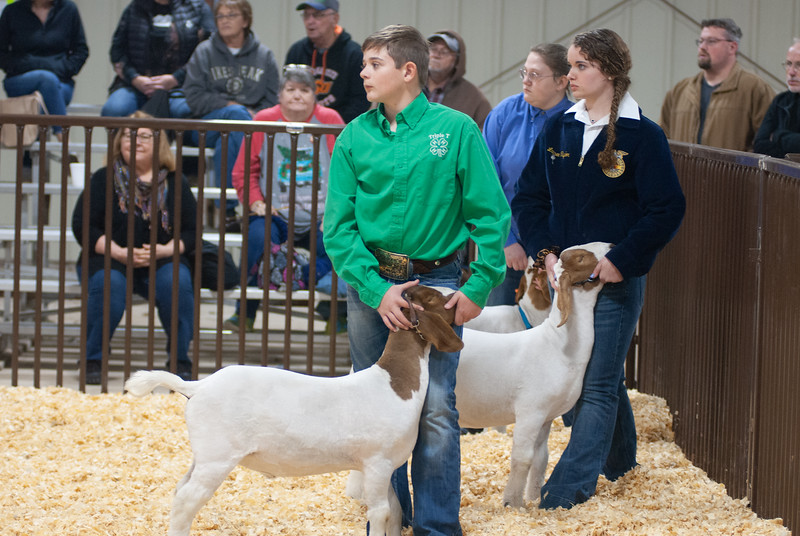 kay_county_showdown_goats_20191207-33