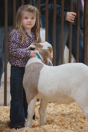 kay_county_showdown_goats_20191207-3