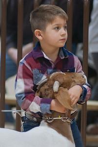 kay_county_showdown_goats_20191207-8