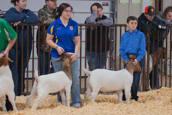 kay_county_showdown_goats_20191207-25