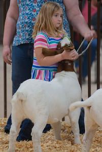 kay_county_showdown_goats_20191207-11