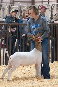 kay_county_showdown_goats_20191207-35