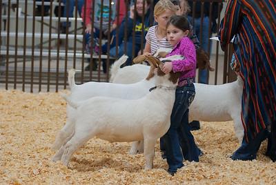 kay_county_showdown_goats_20191207-20