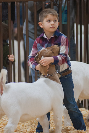 kay_county_showdown_goats_20191207-4