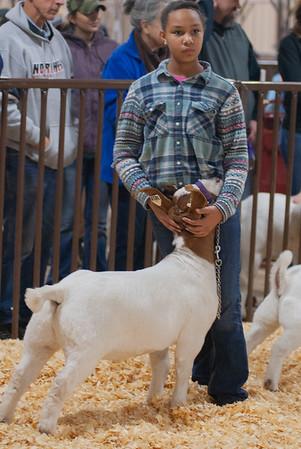 kay_county_showdown_goats_20191207-30