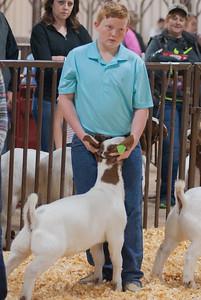 kay_county_showdown_goats_20191207-29