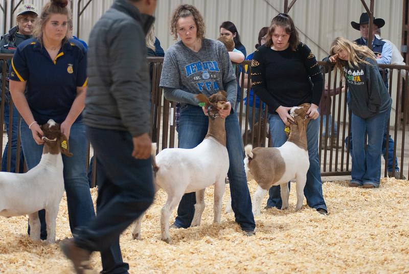 kay_county_showdown_goats_20191207-32