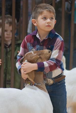 kay_county_showdown_goats_20191207-6