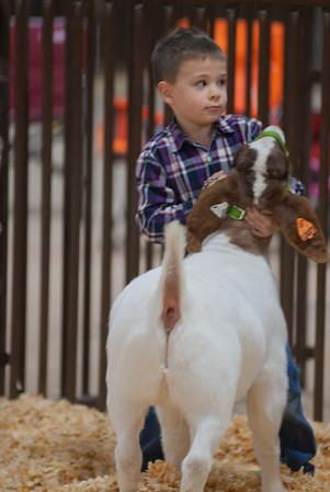 kay_county_showdown_goats_20191207-9