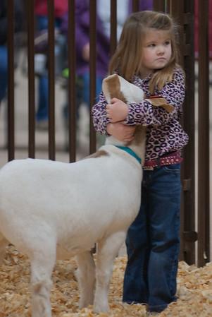 kay_county_showdown_goats_20191207-10