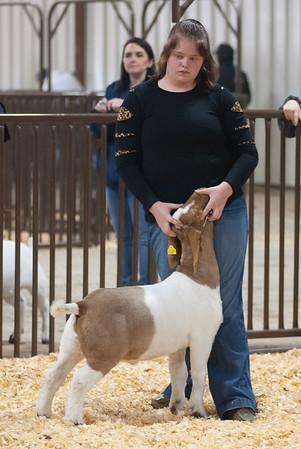 kay_county_showdown_goats_20191207-36