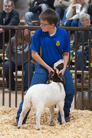 kay_county_showdown_goats_20191207-38