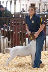 kay_county_showdown_goats_20191207-34