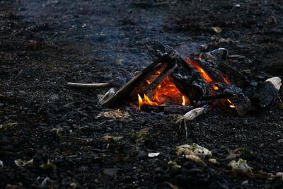 Higgins passage campfire