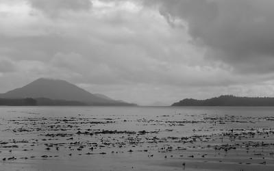 Rain storm Pidwell Bay
