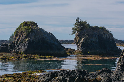 Sea stacks, spring Island