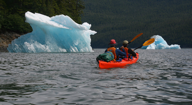 Icebergs are everywhere as we head up Tracy Arm.