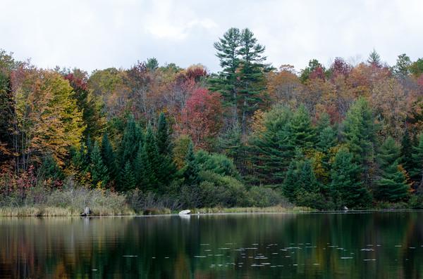 Kayaking on Knapp Ponds II and I