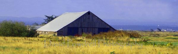 Humboldt Bay barn