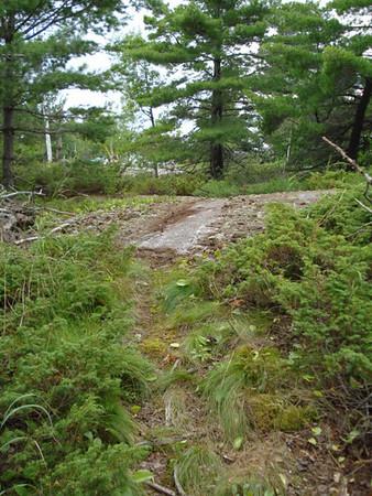 Walking Trails at Diamond Key Lodge
