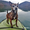 She has the best seat in the kayak.