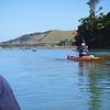 Paddling up Mokau River