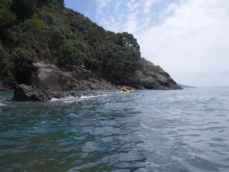 A lovely Paddle from Kawakawa Bay to Tawhitokino Regional Park