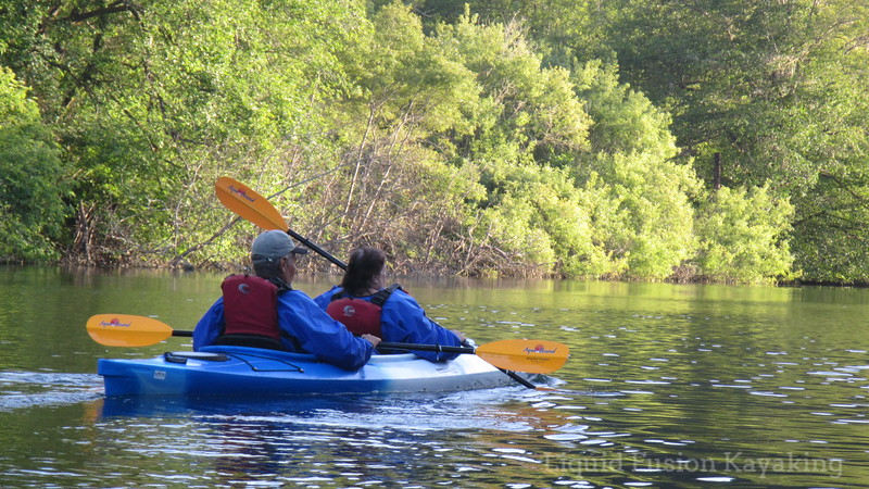Evening kayak tour on Fort Bragg's Noyo River