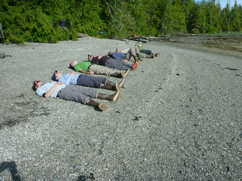Sunbathing Alaskan Style.
