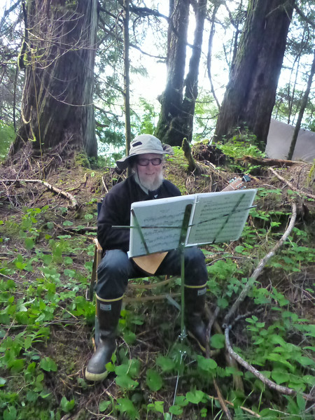 Woodland music elf.