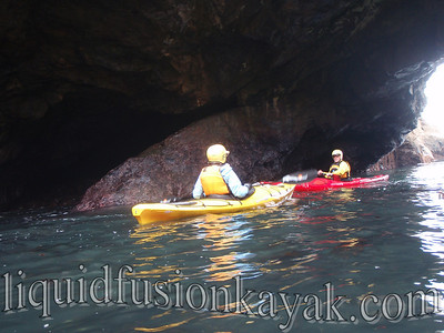 Mendocino Coast Sea Kayaking.