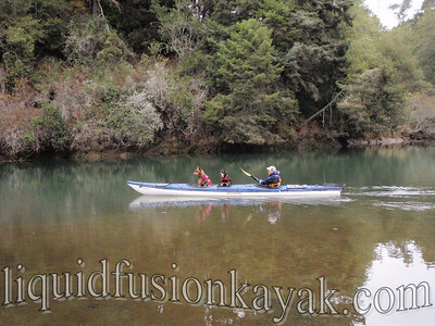 Dogs kayaking on the Noyo River of Fort Bragg