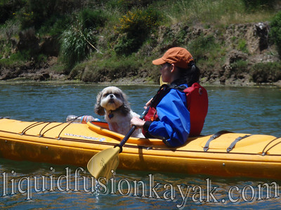Doggie Paddle on the Noyo River